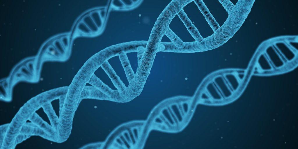 ДНК - почему мы не понимаем друг друга