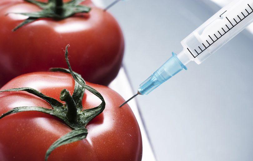 ГМО: спасение или верная смерть?
