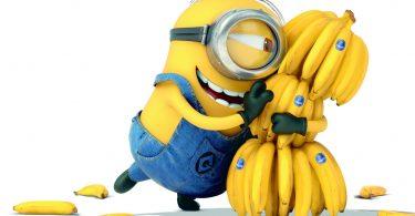 Бананы. Почему стоит их любить?
