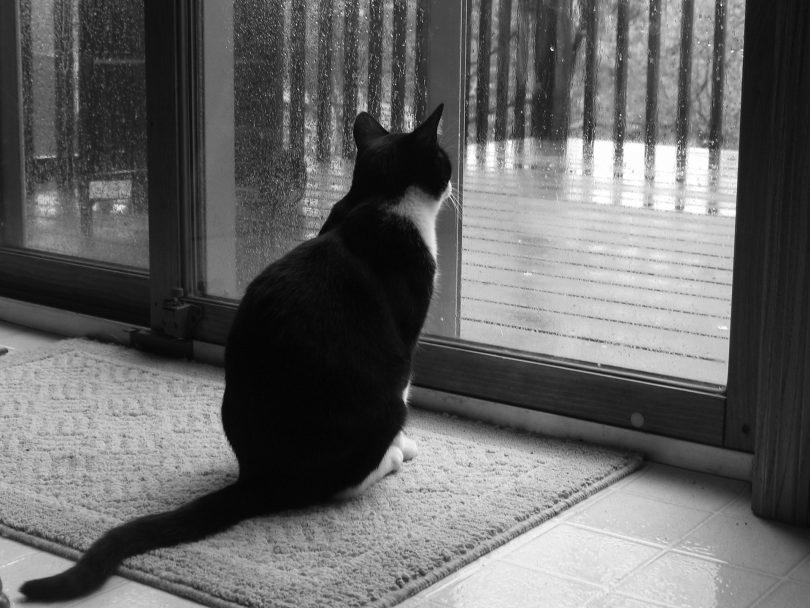 Почему в пасмурную погоду находит грусть?