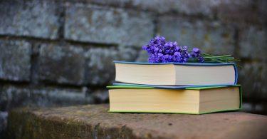 Как устроен книжный маркетинг?