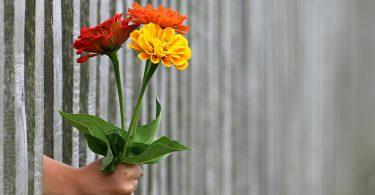 Одиночество в любви: вы вместе, но не близки