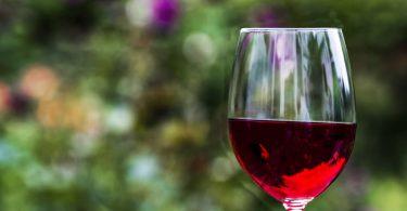 Как правильно выбрать красное вино?