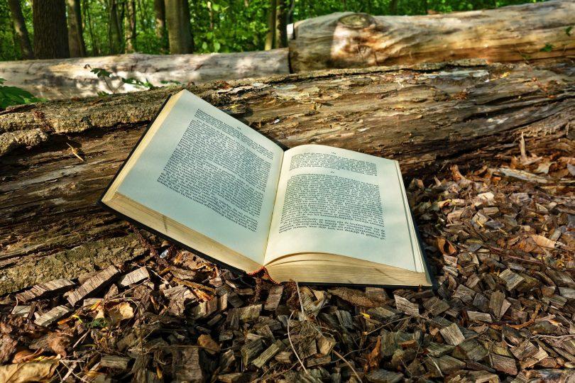ТОП 20 Лучших Книг Всех Времен для Вашей Коллекции