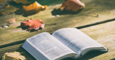 Цитаты из Библии на все случаи жизни